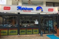 Marinam-Balık-1